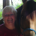 When I first spoke to Carla I could clearly see she was very knowledgeable, and the horse came first.